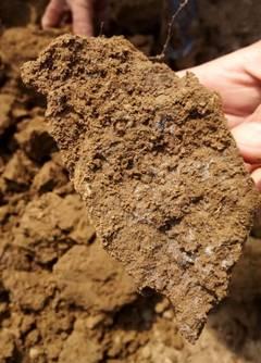 微生物土壤改良与河道治理技术(图5)