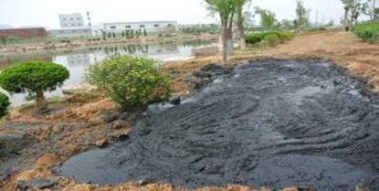 微生物土壤改良与河道治理技术(图17)